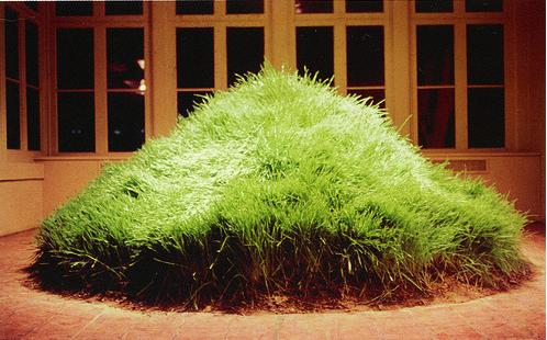 Hans Haacke, Grass Cube, 1967