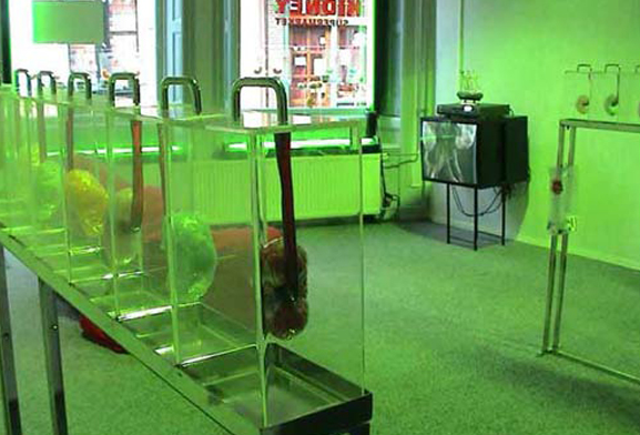 Shilpa Gupta, Your Kidney Supermarket, 2002-2003, video and interactive installation