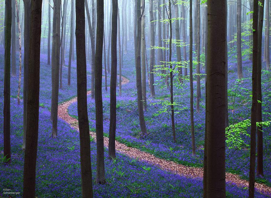 amazing-paths-2