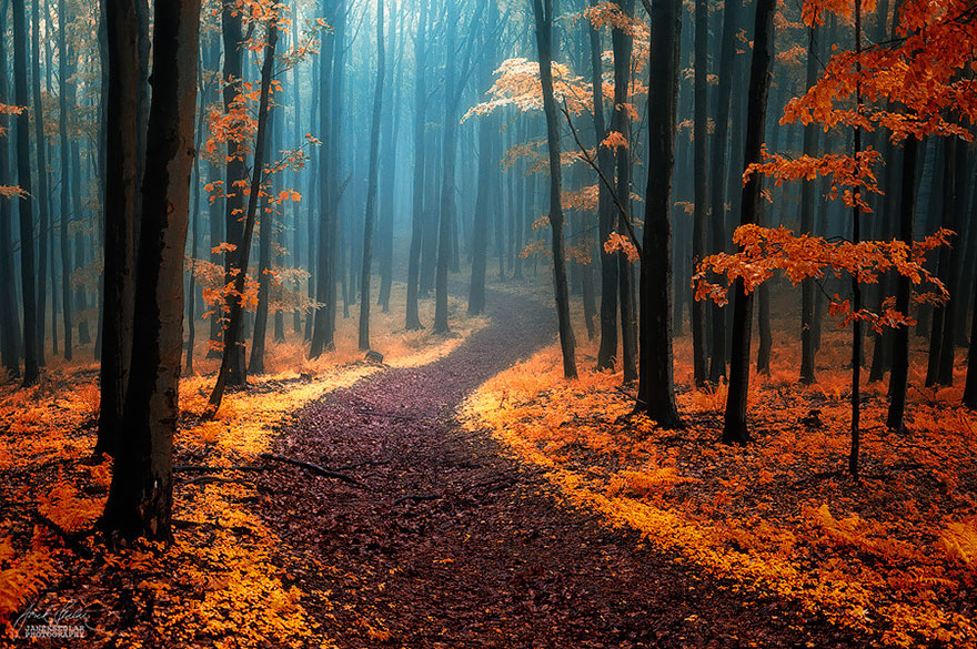 amazing-paths-23