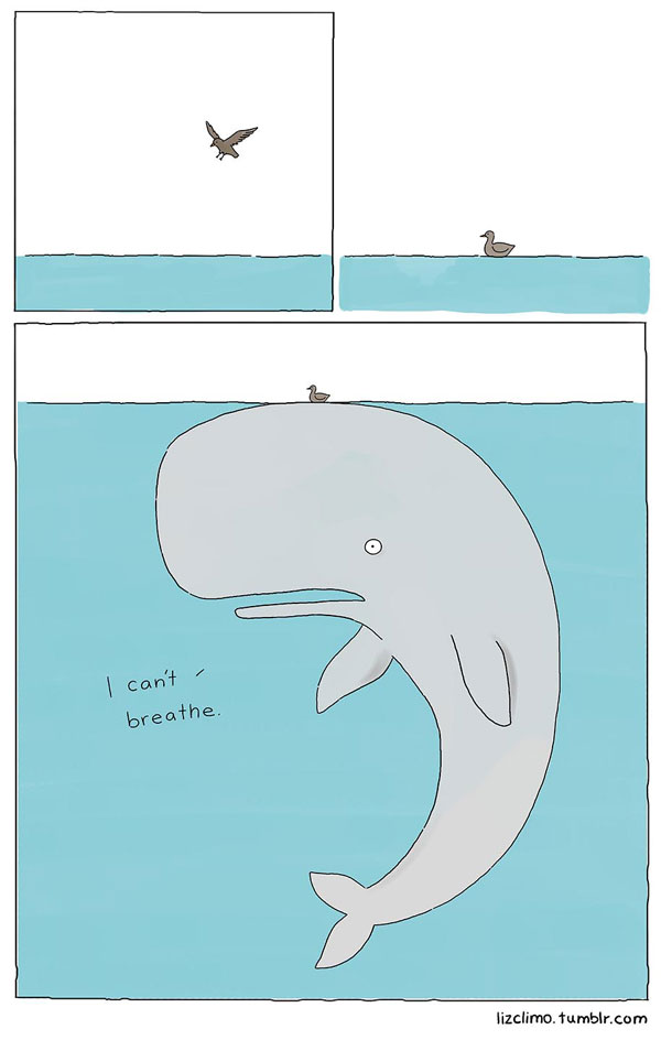 animal-comics-by-simpsons-artist-liz-climo-1