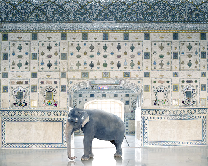 Karen Knorr, Temple Servant, Amber Fort, Jaipur. From the book India Song © Skira Editore. Courtesy of the artist.