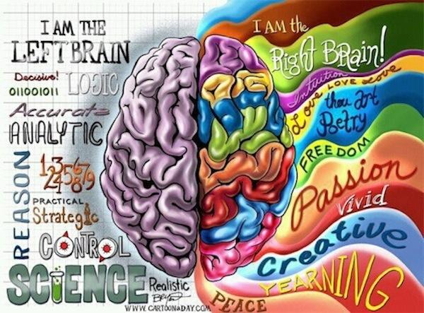 3-No-Left-Right-Brain