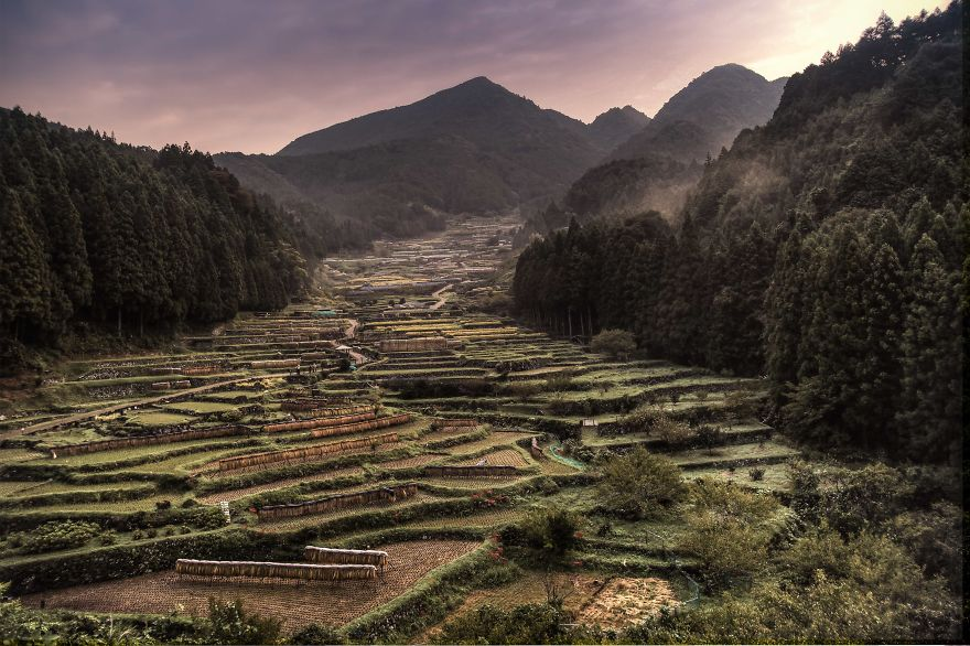 Thousand Terraced Rice Fields
