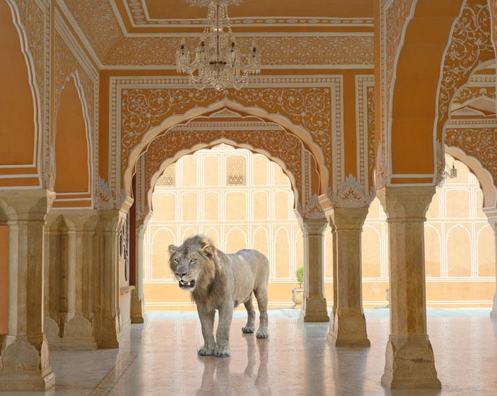Karen Knorr, The Last Lion, Diwan-I-Khas, Jaipur City Palace, Jaipur. From the book India Song © Skira Editore.