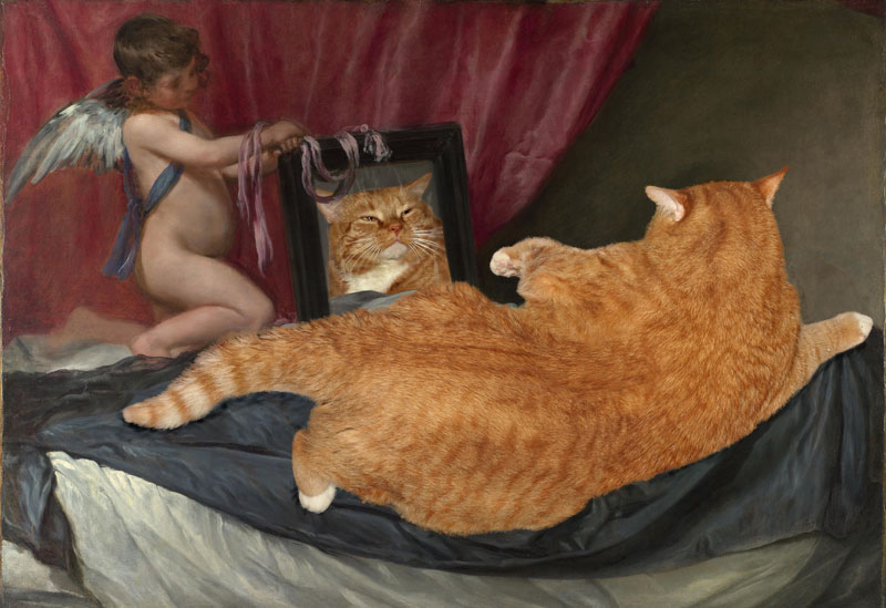fat-cat-photoshopped-into-famous-artworks-11