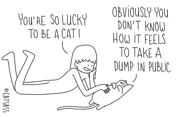 mean-cat-comic-strip-catsass-claude-combacau-11