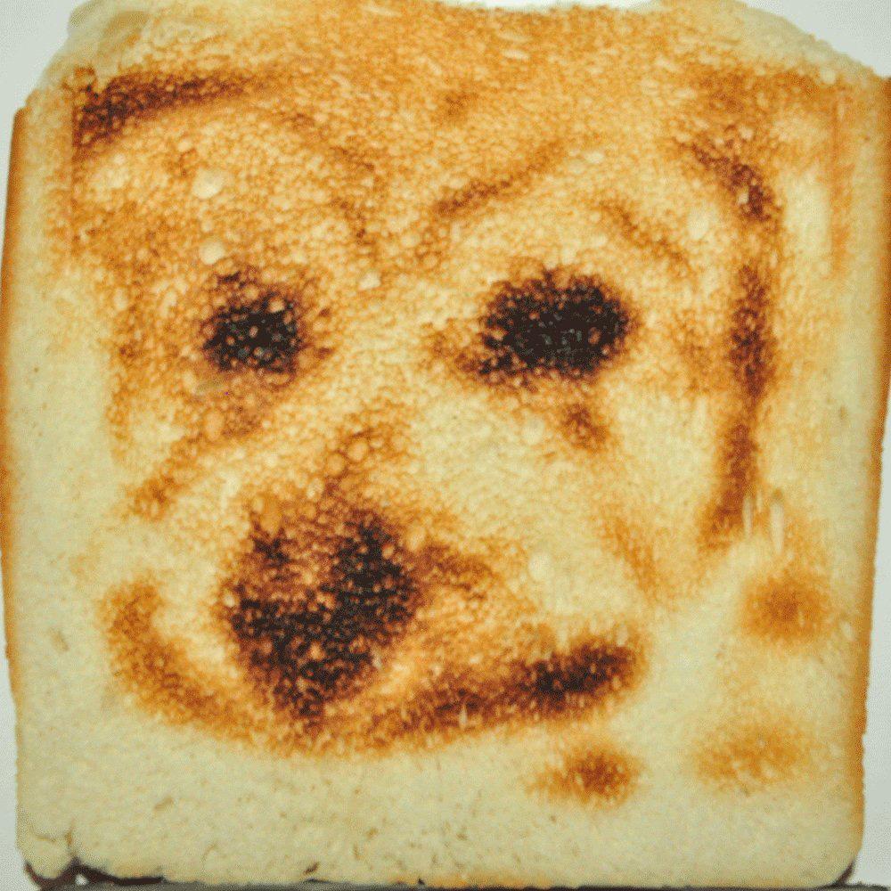 selfie-toaster-4
