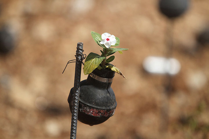 A close up of a flower planted in a tear gas canister