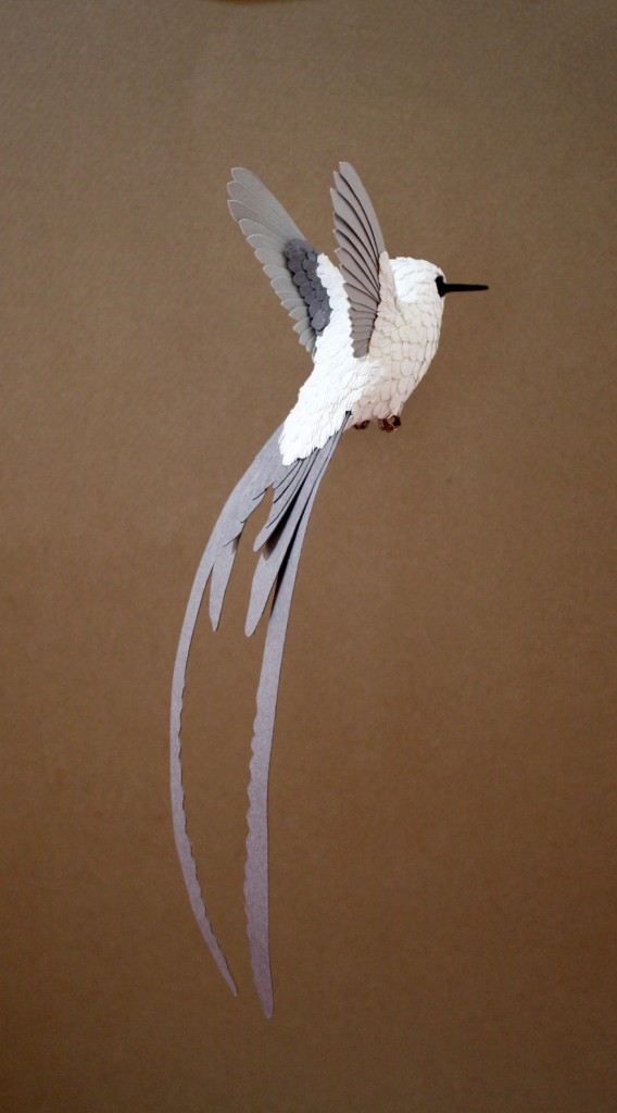 Hummingbird-in-progress-small__880