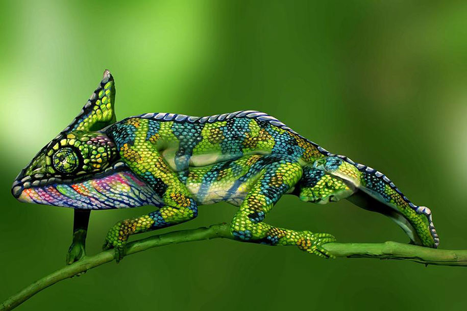 nature-animal-bodypainting-chameleon-johannes-stoetter-88