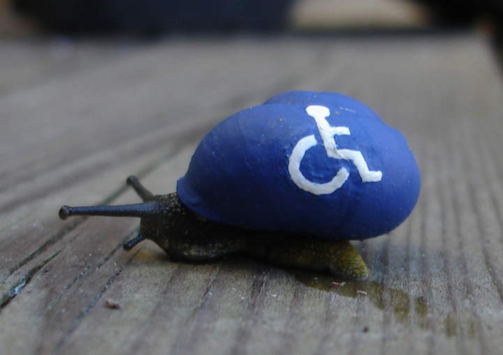 snailpimp7