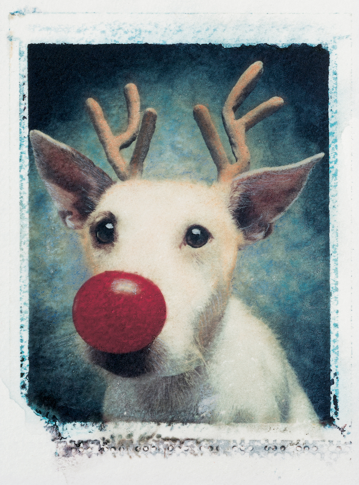 Rudolph 1990