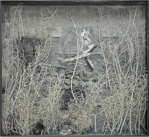 Anselm Kiefer, Merkaba, 2010, photograph, acrylic, shellac, ash, cotton dress, burned books and plaster coated thorn bushes in glass and steel frame, 282 x 307 x 35 cm