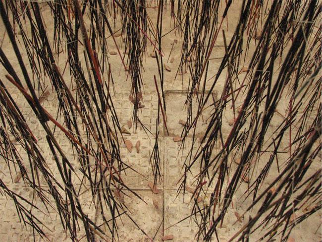 Hemali Bhuta, Growing, 2009, archival print on Waterford paper, 5 x 7