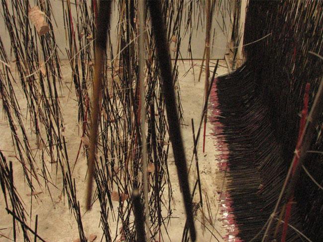 Hemali Bhuta, Growing, 2009, archival print on Waterford paper