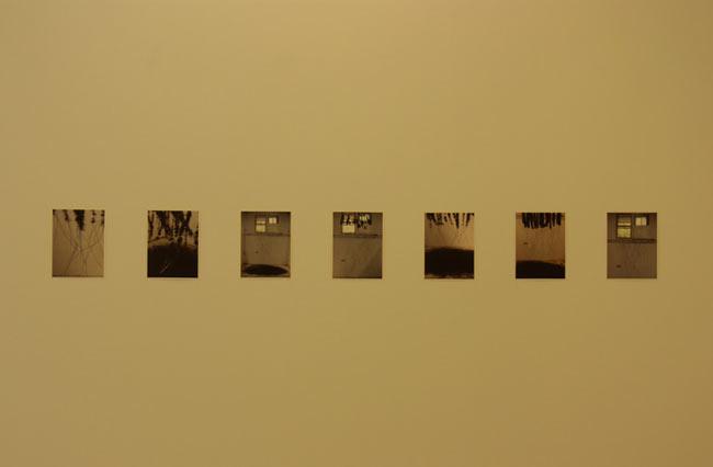 Hemali Bhuta, Shedding, 2009, display view