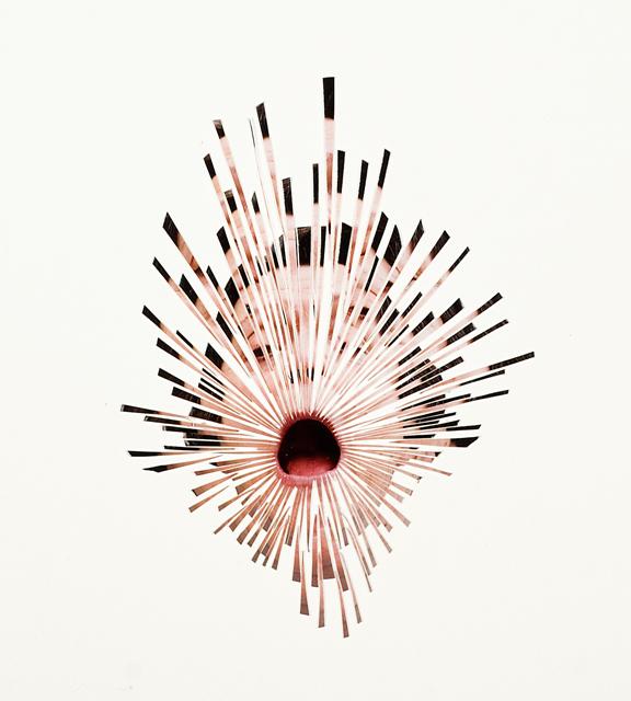 Justine Khamara, Dispersion #1, 2013, Hand cut colour photograph on paper, 60 x 70 cm