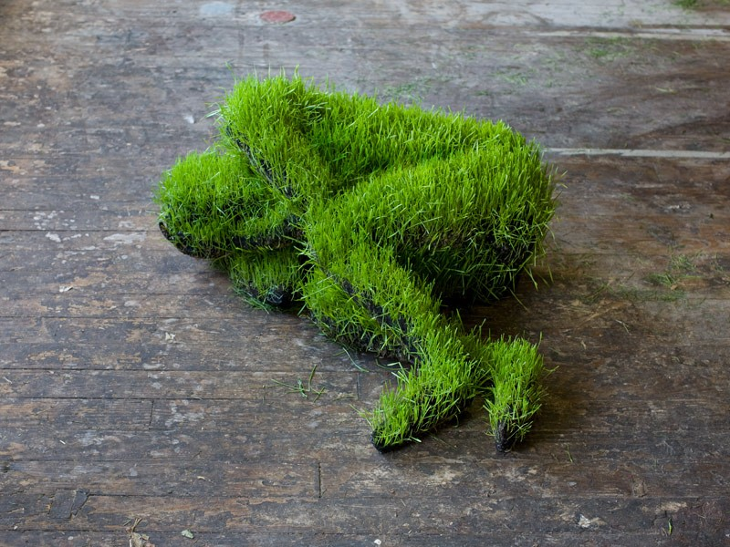 Mathilde Roussel, 25.08.79#2, soil, wheat seeds, recycled metal, fabric. The Invisible Dog Art Center, NY, 2010