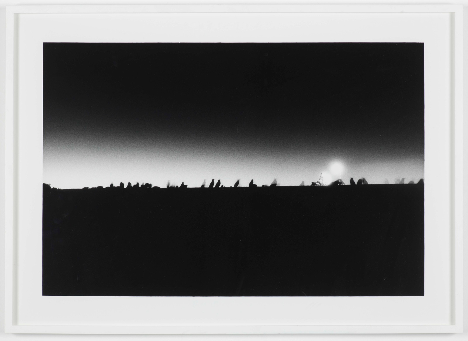 Philippe Parreno, Speaking to the Penguins, 2007, Bblack-and-white infrared photograph, mounted on aluminum and framed in perspex, 133 x 200 cm