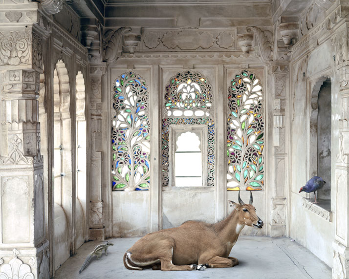 Karen Knorr, A Place Like Amravati, Udaipur City Palace, Udaipur. From the book India Song © Skira Editore. Courtesy of the artist.