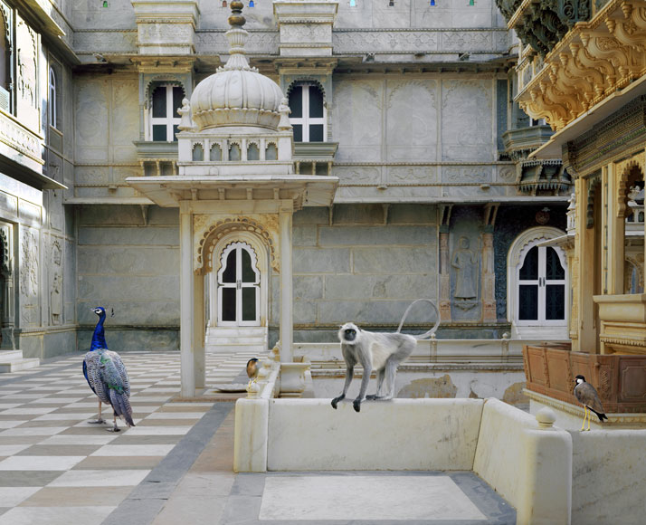 Karen Knorr, The Courtyard Conference, Udai Vilas, Dungarpur. From the book India Song © Skira Editore. Courtesy of the artist.