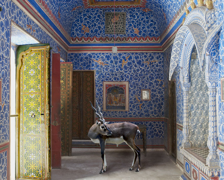 Karen Knorr, The Sound of Rain, Junagarh Fort, Bikaner. From the book India Song © Skira Editore.
