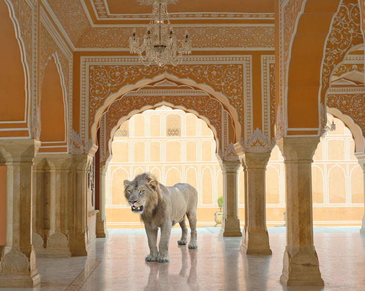 Karen Knorr, The Last Lion, Diwan-I-Khas, Jaipur City Palace, Jaipur. From the book India Song © Skira Editore.