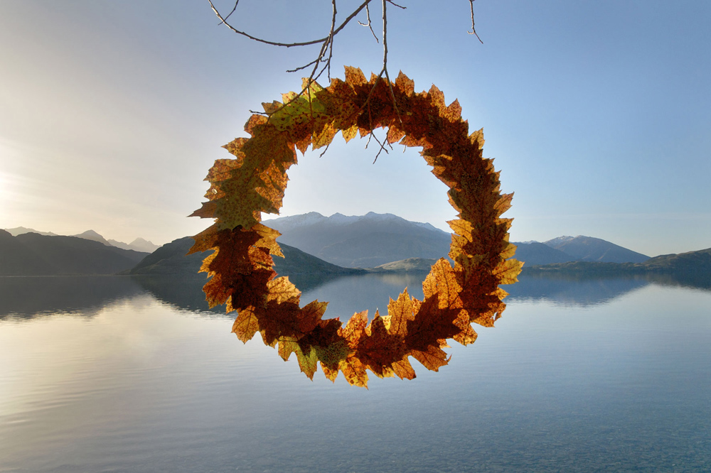 Autumn Leaf Cycle