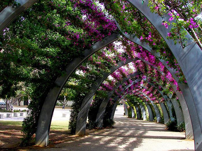 beautiful-streets-trellis-canopies-16
