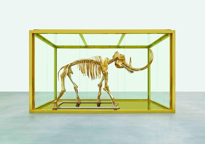 damien-hirst-gilds-woolly-mammoth-skeleton-encased-in-a-_005