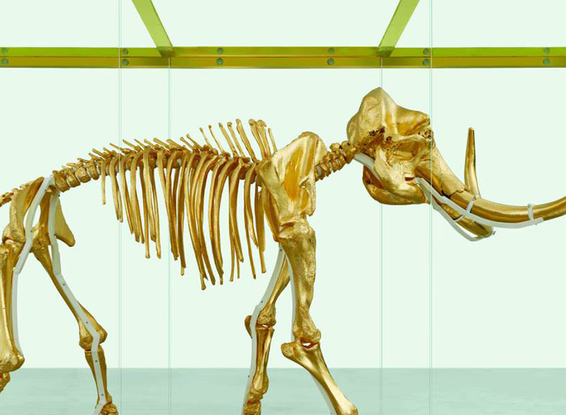 damien-hirst-gilds-woolly-mammoth-skeleton-encased-in-a-gold