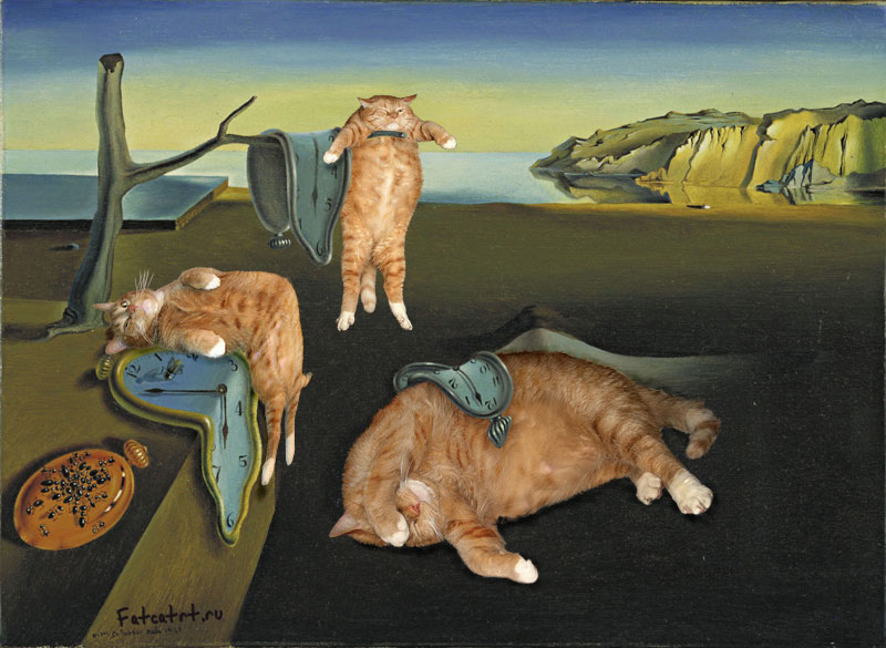fat-cat-photoshopped-into-famous-artworks-15