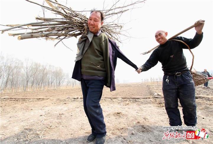 jiahaixiajiawenqi3