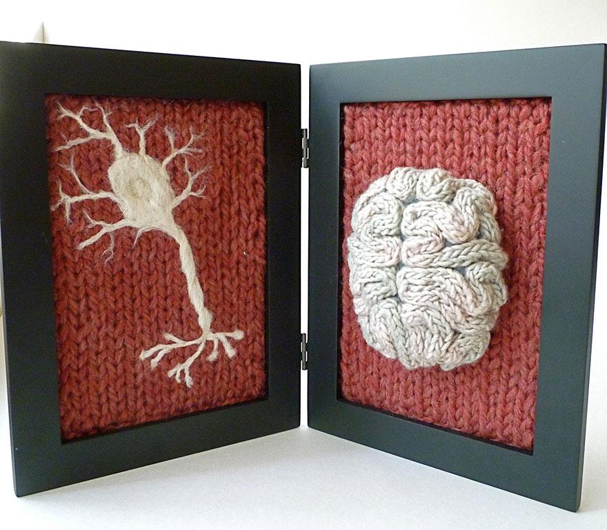 knit-animal-dissection-anatomy-emily-stoneking-aknitomy-15