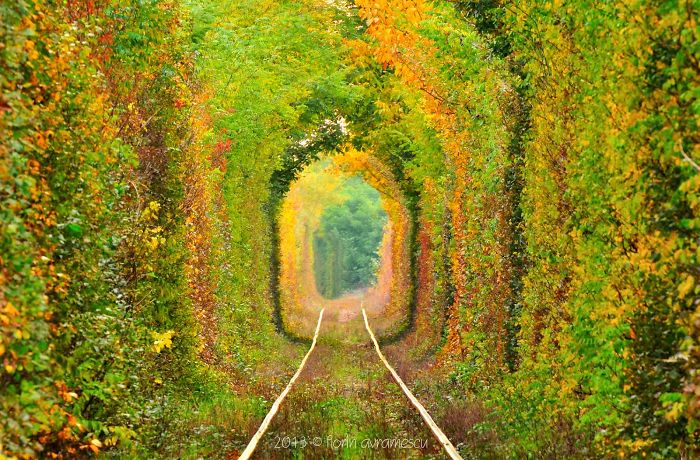 tunel-pastel__700