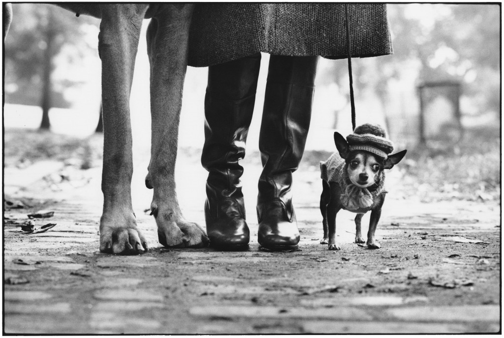 Elliott Erwitt, USA, New York, 1974, Felix Gladys and Rover.