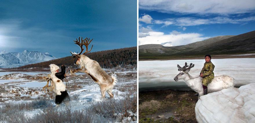 reindeer-people-hamid-sardar-afkhami-8