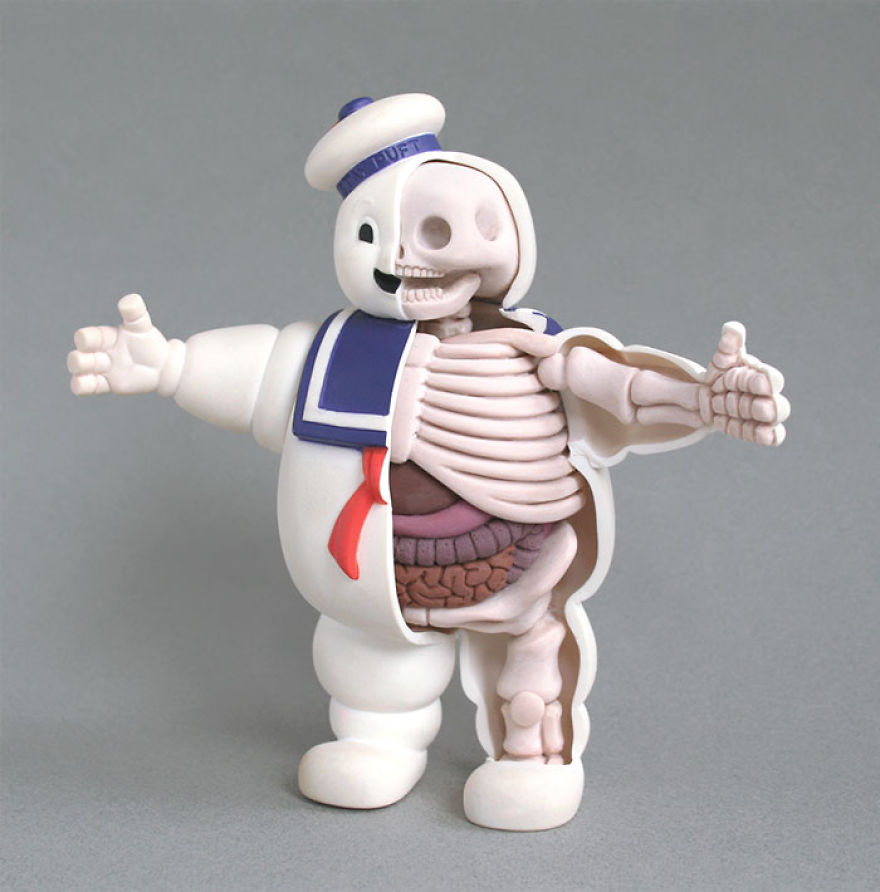 children-toy-cartoon-anatomy-bones-insides-jason-freeny-3__880