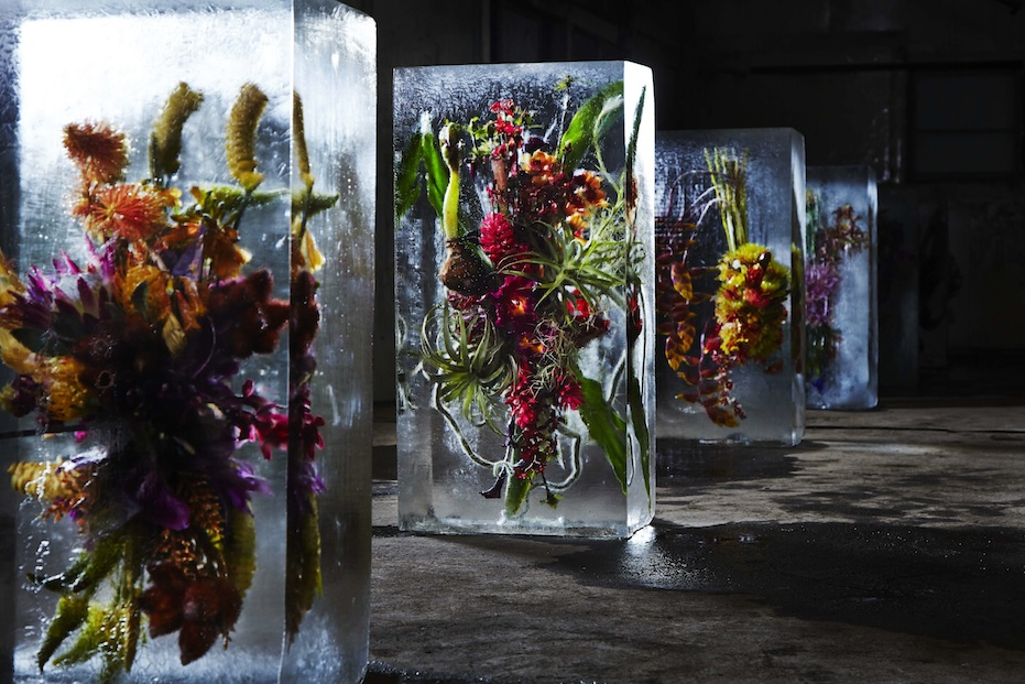 ICED-FLOWERS-3