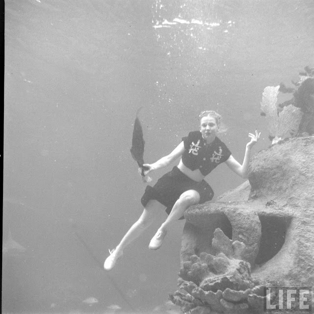 UnderwaterFashionShow2C1947281129
