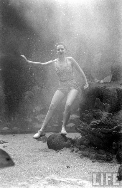 UnderwaterFashionShow2C1947281229