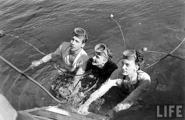 UnderwaterFashionShow2C1947282229