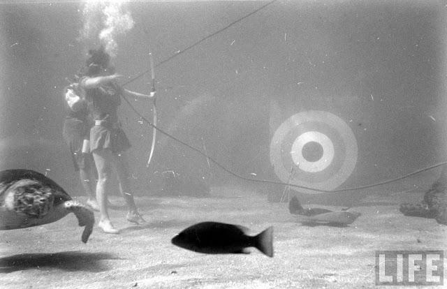 UnderwaterFashionShow2C194728629