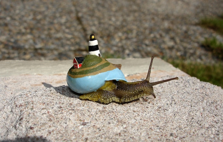 snailpimp9