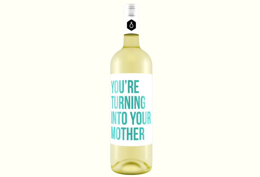 Wine-Labels-That-Have-No-Time-For-Your-Crap21__880
