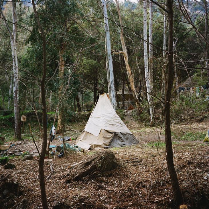 antoine-bruy-scrublands-07