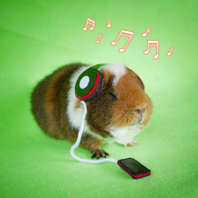cute-hamster-costumes-fuzzberta-instagram-16
