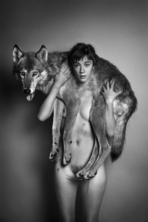 Web_india_coyote_2010