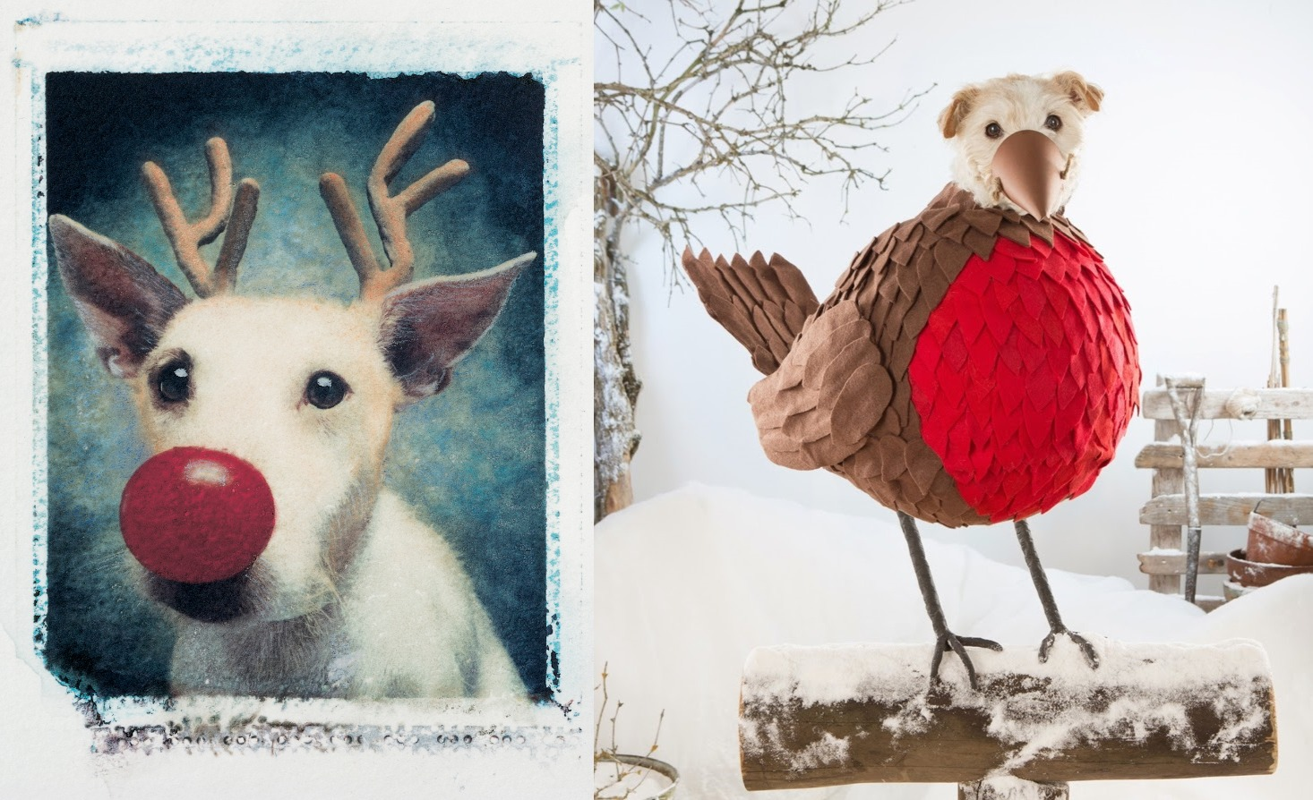 In 1990 Photographer Peter Thorpe Made A Christmas Card Featuring His Rescue Terrier Paddy This Was To Be The First Of Many Over Next 25 Years 2 Dogs
